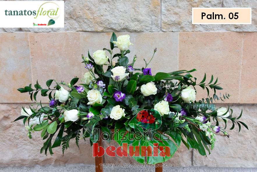 Palma005