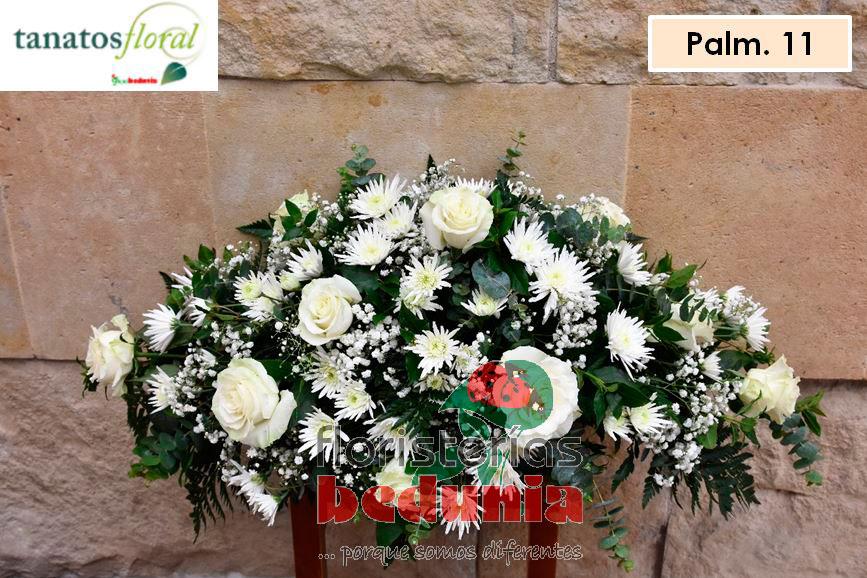 Palma011