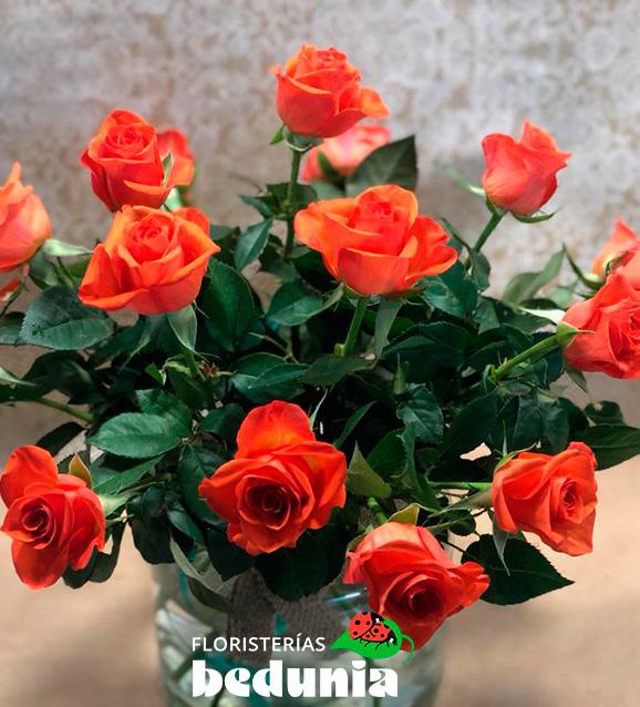 Rosa de tallo corto