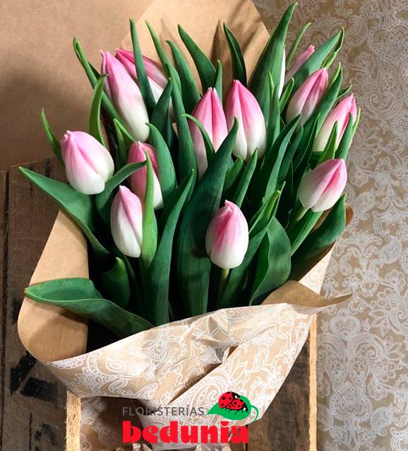 Tulipán bolroyal punk