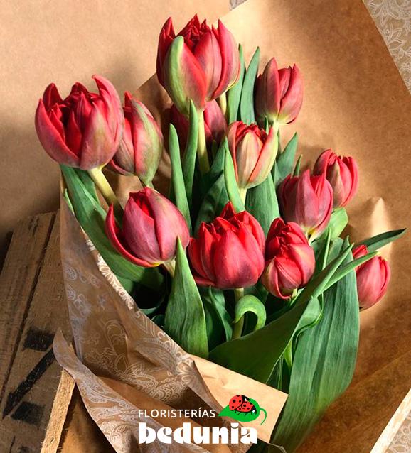 Tulipán doble Red Princess
